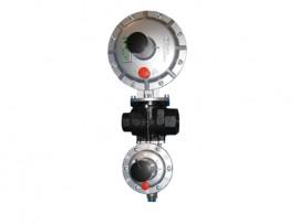 Регулятор давления газа Dival 500